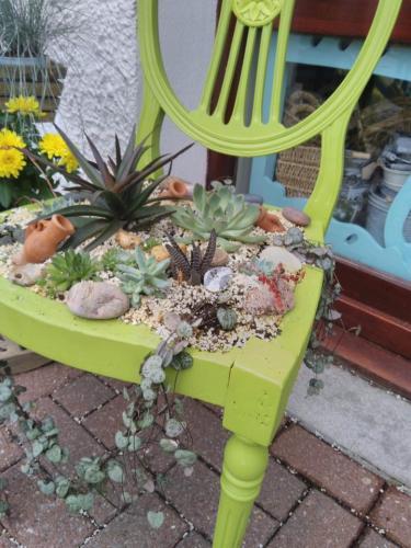 Amazing Succulent Plant Chair