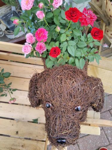 Lovely Doggy Planter