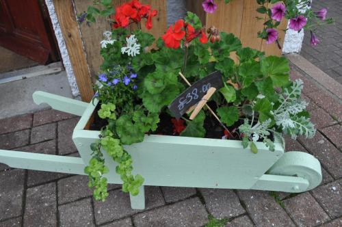 Amazing wheelbarrow planter
