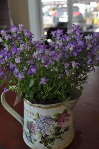 Attractive Vase