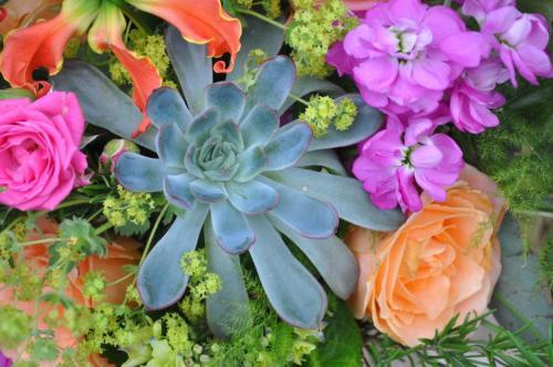Amazing succlents weddding bouquet